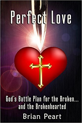 perfect love book cover